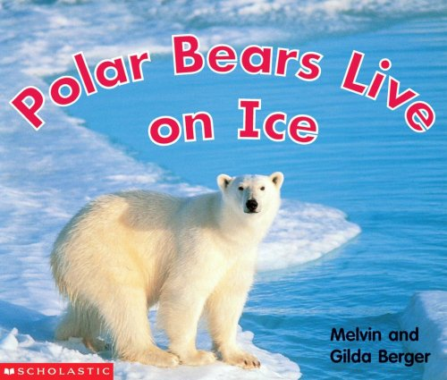 Polar Bears Live On Ice