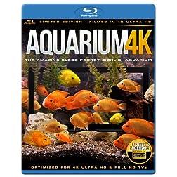 AQUARIUM 4K - The Amazing Blood Parrot Cichlid Aquarium [Blu-ray]