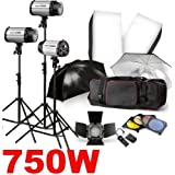 "750W Studio Kit for Professional & Home Studio Photography! Includes: Softbox, Barndoor, Trigger, Bag, 3x 250w Strobe Lights, 3x Light Stands (75"" max height), 2x 70 x 50cm Softbox,2x Black/Silver Umbrellas, 1x 16 Channel Wireless Trigger (transmitter + receiver), 1x Barn Door with Honeycomb + 4 Color Gel Set, 1x Carrying bag.by Neewer"