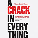 A Crack in Everything: The Susan Callisto Mysteries, Book 1 | Angela Gerst