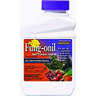 Bonide 880 Fung-onil Concentrate Fungicide-PT FUNGONIL CONC