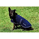 EQUI-THÃME'Polar' dog rug - 31 cm/12' - Navy Blue, Light Blue Binding