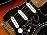Fender USA Stevie Ray Vaughan Stratocaster アウトレット