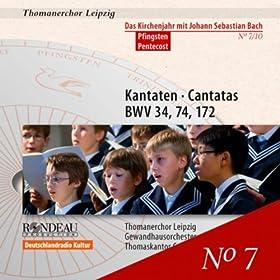O ewiges Feuer, o Ursprung der Liebe, BWV 34: Recitative: Erwahlt sich Gott die heilgen Hutten (Bass)