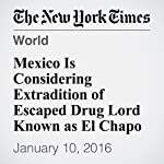 Mexico Is Considering Extradition of Escaped Drug Lord Known as El Chapo | Azam Ahmed