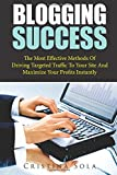 Blogging Success: The Most Effective Methods Of Driving Targeted Traffic To Your Site And Maximize Your Profits Instantly (Volume 1)