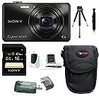 Sony Cyber-shot DSC-WX220 DSCWX220/B Digital Camera (Black) with 16GB Accessory Bundle