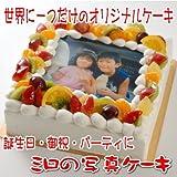 世界に一つだけのオリジナル写真ケーキ (生クリーム・生チョコレート)