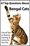 47 Top Questions About Bengal Cats: C...