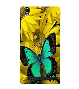 Vizagbeats butterfly on yellow chameli flowers Back Case Cover for Intex Aqua Power Plus