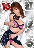 紅音ほたるHISTORY 16時間4枚組 [DVD]