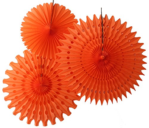 Hanging Honeycomb Tissue Fan, Orange, Set of 3 (13 inch, 18 inch, 21 inch) (Large Streamer Paper compare prices)