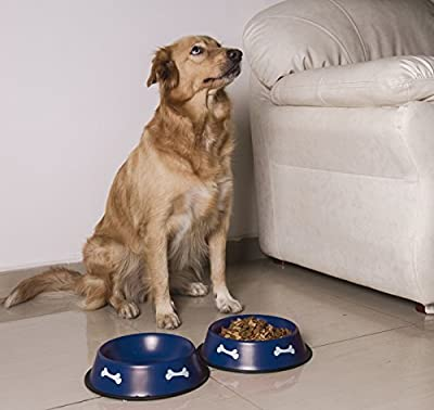 Gpet Dog Bowl 32 Ounce Made of Stainless Steel for Long Durability with Rubber Base That Bowls Wont Slip, Your Pet Can Use One for Water and One for Food Made for Puppy, Beautiful Dish (Set of 2)