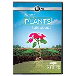 Nature: What Plants Talk About