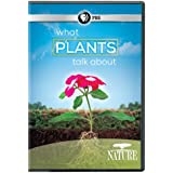 Nature: What Plants Talk About [Import]