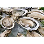 Select Oysters - 8 # Unit - 24 Hour N...