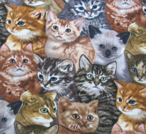 Allover Kitten Fleece Throw Blanket front-510033