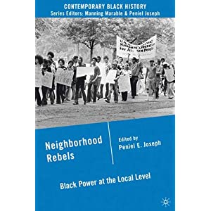 Neighborhood Rebels : Black Power at the Local Level