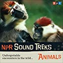NPR Sound Treks: Animals: Unforgettable Encounters in the Wild Radio/TV Program by  NPR Narrated by Jon Hamilton