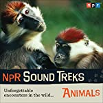 NPR Sound Treks: Animals: Unforgettable Encounters in the Wild |  NPR