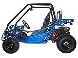 250cc 2-seat Go Kart (KD-250FS) thumbnail