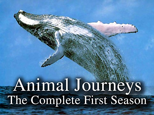 Animal Journeys - The Complete First Season