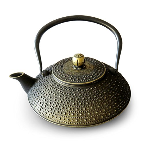 Huswell Cast Iron Teapot, Stainless Steel Infuser, 40 oz./1.2 Litre (40 Oz Cast Iron Tea Pot compare prices)