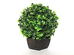 Miracle Retail Artificial Bonsai Wild Plant with Pot(26 cm, Yellow, Green)