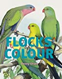 img - for Flocks of Colour book / textbook / text book