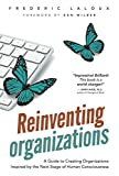 img - for Reinventing Organizations book / textbook / text book