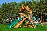 Gorilla Playsets Blue Ridge Frontier Wood Swing Set