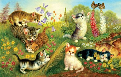 Cheap SunsOut Jurgen Scholz Cats In The Meadow 1000Pc Jigsaw Puzzle (B000MV0AL6)