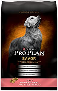 Purina Pro Plan Dry Dog Food, Savor, Shredded Blend Adult Lamb and Rice Formula, 35-Pound Bag, Pack of 1