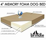 Brindle 4&#8243; Solid Memory Foam Orthopedic Dog Bed, Medium 34&#8243; x 22&#8243;