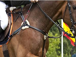 5 Point English Leather Elasticated Combination Breastplate & Martingale With Real Sheepskin. Black & Brown. Cob, Full Horse & Extra Full Size. Ideal for Competition, Show Jumping, Eventing, Hunting, Cross Country & Hunter Trials. (Brown, Cob)