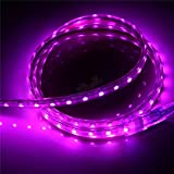Non WaterProof SMD 3528 LED STRIP Lights (5 Meter) + DC 12V Adapter + LED Dimmer / Controller (PINK)