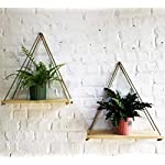 ASLINY [Set of 2| Distressed Wood Hanging Swing Rope Floating Shelves - Windows, Wall Shelf (Real Pine Wood Color)