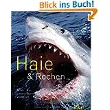 Haie & Rochen