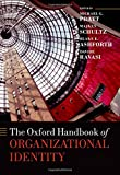 img - for The Oxford Handbook of Organizational Identity book / textbook / text book