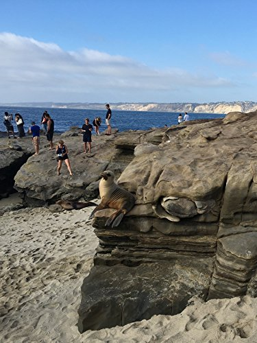 hiking-with-valentine-beaches-at-san-diego-ov