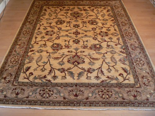 Pashar Hand Knotted Area Rug