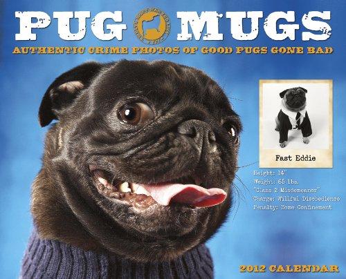 Pug Mugs 2012 Calendar