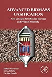 Advanced Biomass Gasification: New Concepts for Efficiency Increase and Product Flexibility