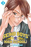 Seiho Boys' High School!, Vol. 3