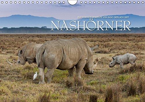 Emotionale Momente: Nashörner (Wandkalender 2017 DIN A4 quer): Nashörner gehören zu den absolut bedrohten Tierarten dieser Welt. Ingo Gerlach GDT hat ... (Monatskalender, 14 Seiten ) (CALVENDO Tiere)