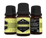 EA-AromaCare-Pack-therische-lmischung-fr-die-Aromatherapie-als-Geschenkset-therapeutische-Qualitt-100-reines-l-6-x-10-ml-Detox-entspannend-harmonisierend-verjngernd-einschlaffrdernd-und-muskelrelaxier