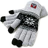 (ベンデイビス) BEN DAVIS 手袋 メンズ グローブ ニット スマホ対応 スマートフォン対応 雪柄 ブロックチェック タグ 4color Free 柄B