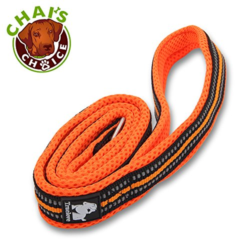 Chai's Choice Best Padded 3M Reflective Outdoor Adventure Dog Leash (Orange, Large 78 in.)