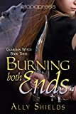 Burning Both Ends (Guardian Witch Book 3)