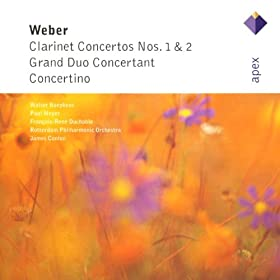 Weber : Grand Duo concertant Op.48 J204 : I Allegro con fuego